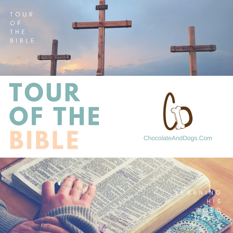 Tour of the bible